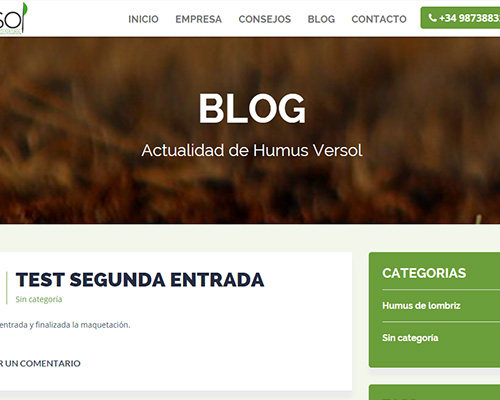 diseño-web-humus-versol3
