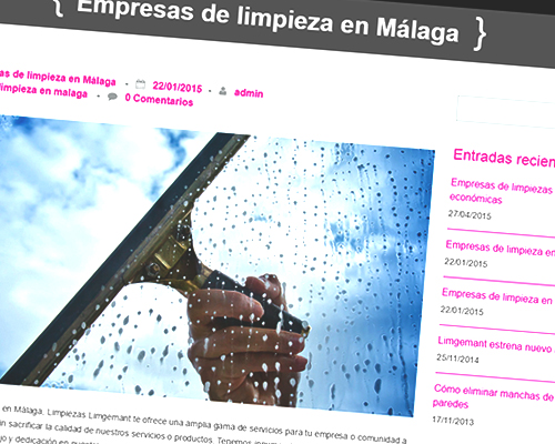 diseño-web-limpiezas-limgemant3