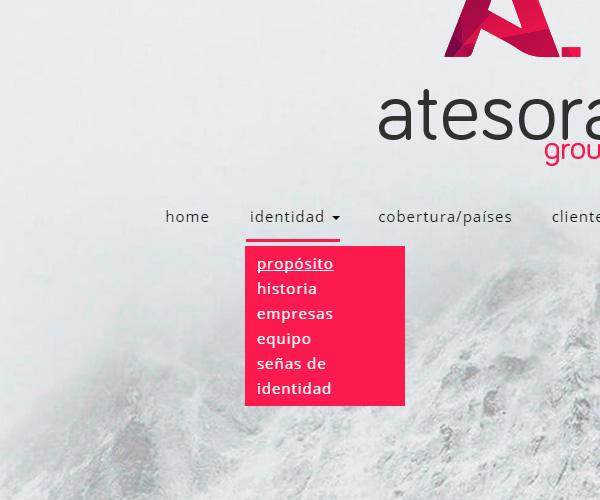 diseño-web-a-medida-atesora-group-2